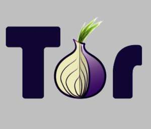 tor-the-onion1